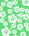 Hibiscus flowers on green background