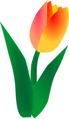 Orange Tulip Clip Art